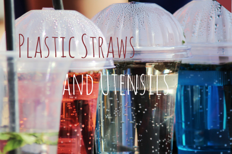 <div class='homepage-block-latest-news'>Plastic Straws and Utensils </div>